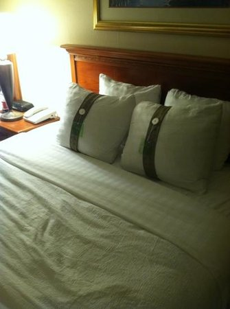 The Hotel Ithaca:                   queen bed. lamp is very bright!
