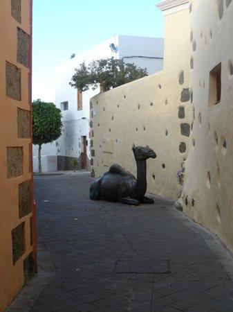 Hotel Rural Casa de los Camellos:                   Il Cammello!