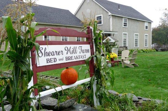 Shearer Hill Farm B&B:                   Entry