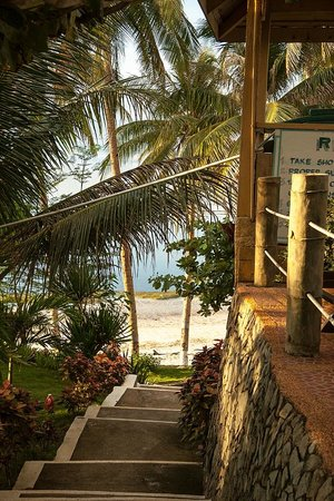 Anda White Beach Resort:                   Stairs down to the beach