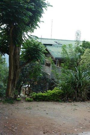 Randholee Luxury Resort:                   Chambre très mal située ( Quelle vue !!)