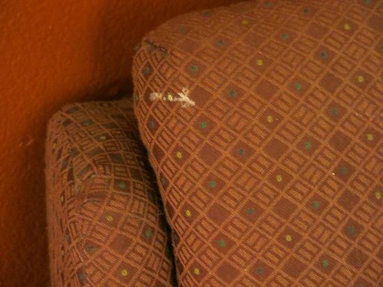 La Quinta Inn Corpus Christi North:                   paint on chair