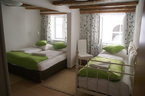 Pension Junger Fuchs Hotel Bild