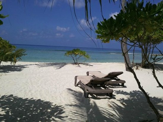 Kuredu Island Resort & Spa:                   Beautiful Beach!