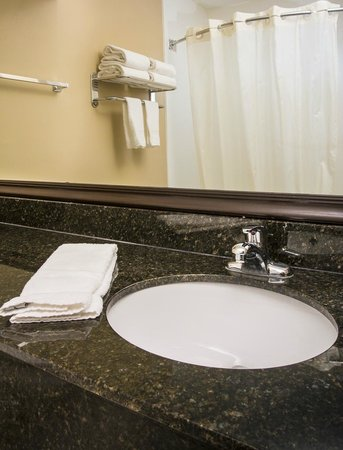 Best Western Plus Mishawaka Inn: Guest Bathrooms