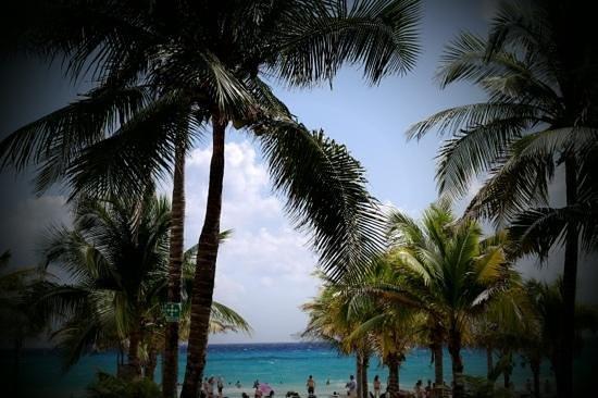 Hotel Riu Playacar:                   uitzicht vanaf 't zwembad naar de zee! (riu playacar)