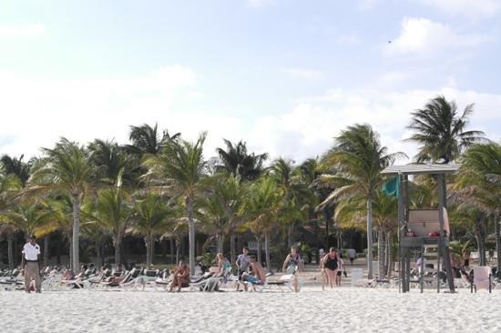 Hotel Riu Playacar:                   vooraanzicht van zee richting hotel feb '13