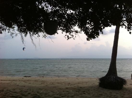 Mac's Bay Resort:                   macs bay beach