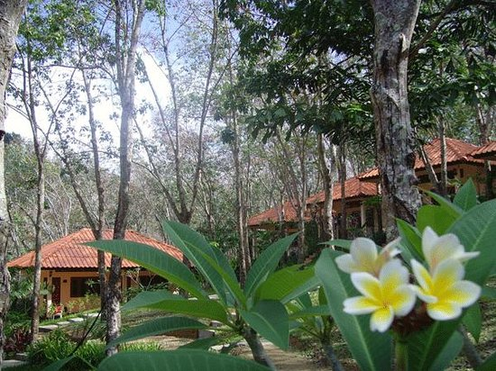 Koh Mook Rubber Tree Bungalows
