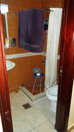 Zomurd Kartaj:                                     Bathroom