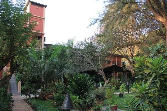 Ngala Lodge:                   The 'old' building