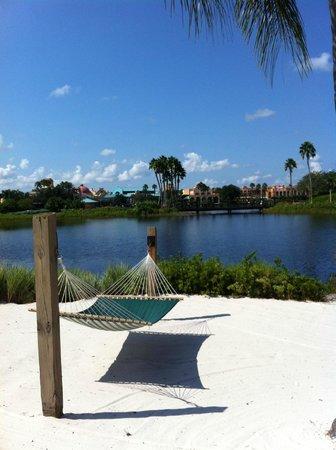 Disney's Coronado Springs Resort:                   One of the many hammocks by the lagoon
