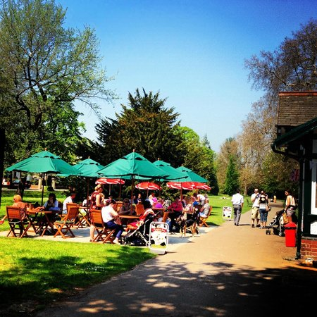 Central Cross Cafe: A beautiful summer's day in the park