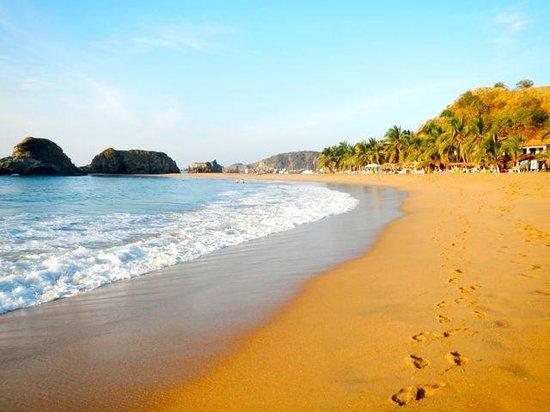 Posada La Barca:                   The nearby golden sandy beach