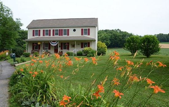 Red Cardinal Bed and Breakfast: Welcome