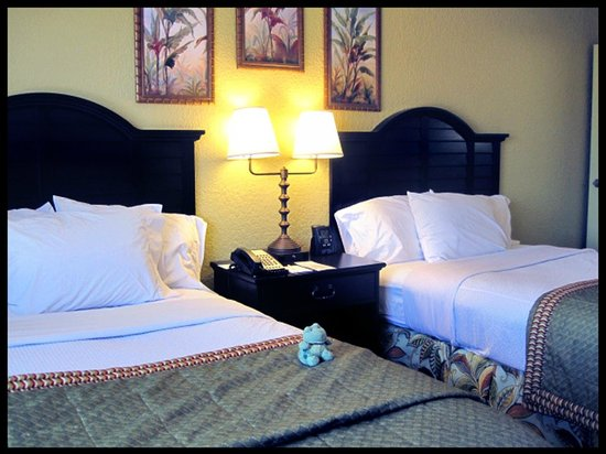 Embassy Suites by Hilton Fort Lauderdale 17th Street:                   ROOM: 227 - 2 Queen Bed Suite