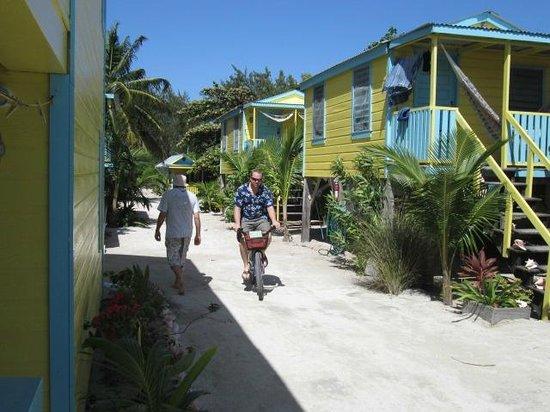 Colinda Cabanas : Feb 21 / 2013