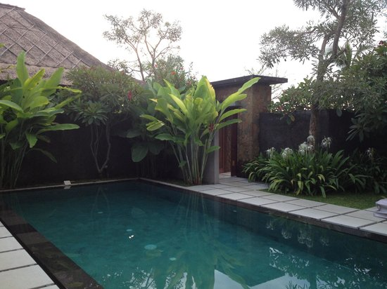 The One Villa:                                                                         Pool