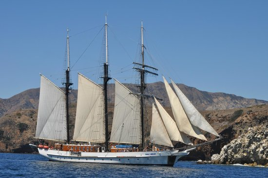 Channel Islands National Park, แคลิฟอร์เนีย:                                                       Passing tall ship