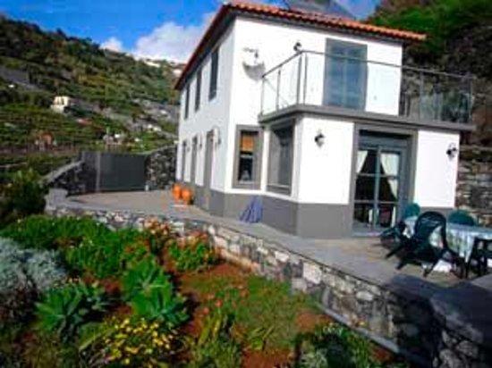 Foto de Casa Palmeira & Casa Nolina