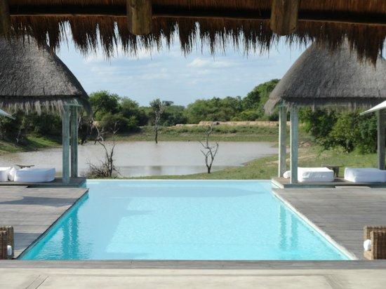 Kapama River Lodge :                                     Spa