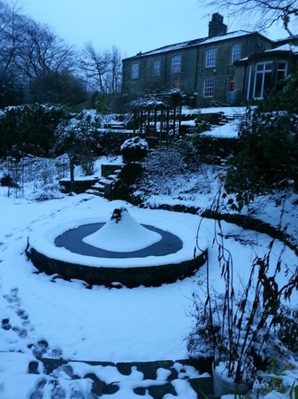 Woodlands Guest House:                                     Woodlands garden as winter wonderland