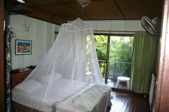 Similan Islands National Park Bungalows:                   Inside room.  Mozzie net is our own.