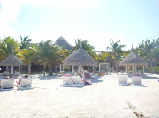 Holbox Hotel Casa las Tortugas - Petit Beach Hotel & Spa:                   Casa Tortuga's beach, as seen from the water