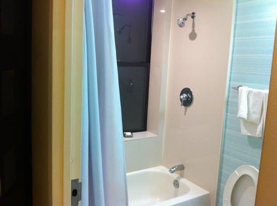Hotel Mela:                   shower