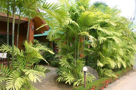 Tanamas House:                   Grounds