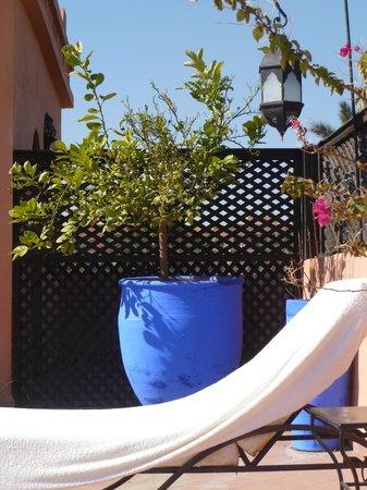 Villa Amira et SPA:                   terrace