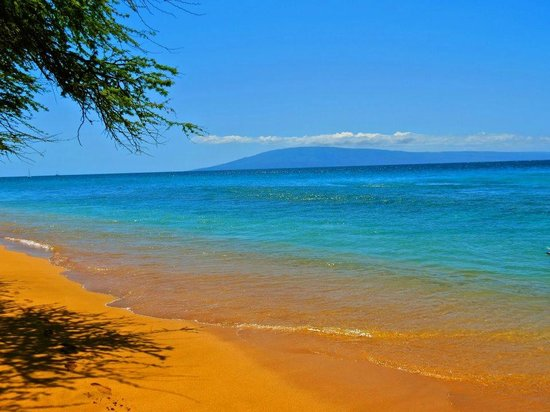 '''' from the web at 'https://media-cdn.tripadvisor.com/media/photo-s/03/84/f0/03/ka-anapali-beach.jpg'