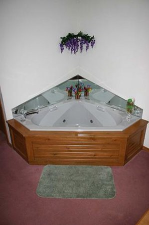 Tawas City, MI: Enjoy you in-room jacuzzi