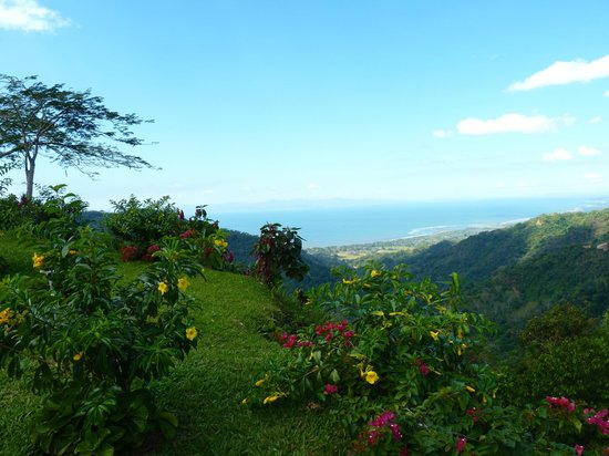 Pura Vida Gardens and Waterfalls:                   Stunning Views