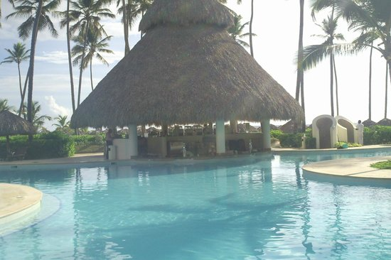 Secrets Royal Beach Punta Cana:                                     Swim-up bar