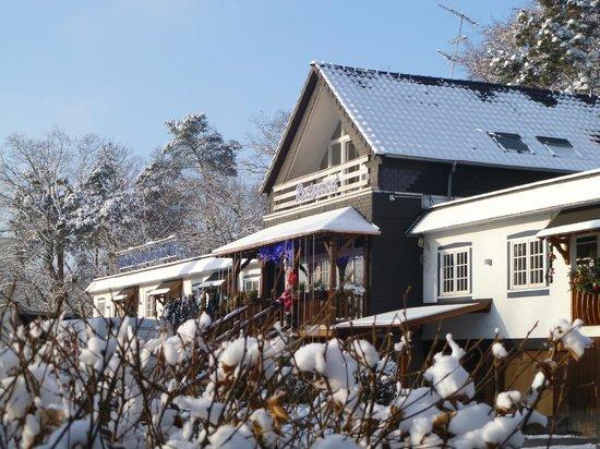 Hotel Restaurant les Pins : L'hiver en Alsace du Nord