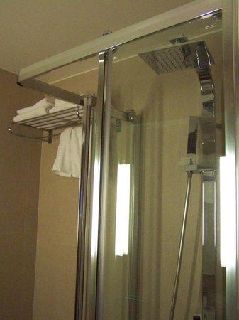 Emeraude Hotel Plaza Etoile:                   particolari del bagno : la doccia