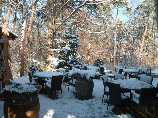 Hotel Restaurant les Pins : La terrasse en hiver