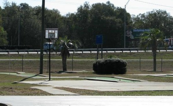 Howard Johnson Inn - Ocala FL:                   Basketball goal and small mini golf area