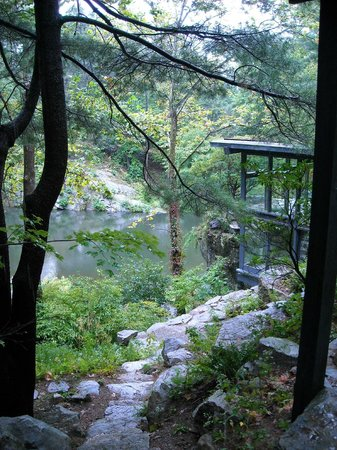 Manitoga / The Russel Wright Design Center:                   A view from the studio