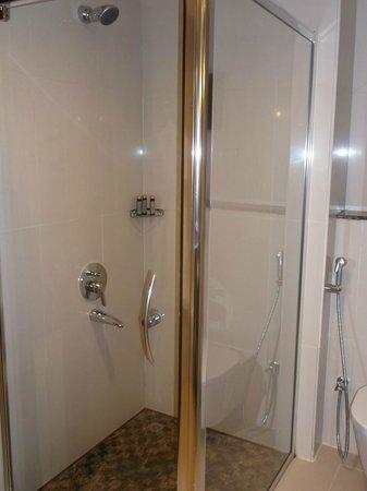 Park Regis Kris Kin Hotel:                   walk-in shower