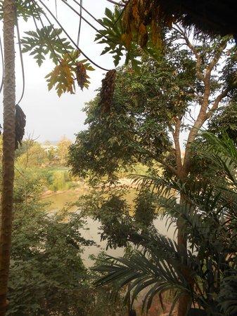 Thongbay Guesthouse:                   Vue depuis le bungalow
