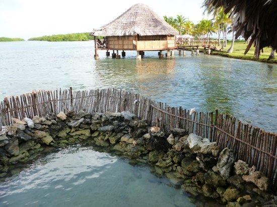 Yandup Island Lodge:                   foto tomada desde el comedor