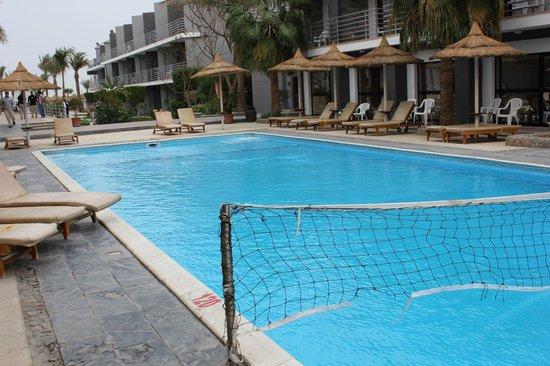 Hurghada SeaGull Beach Resort:                   бассейн в Премиум