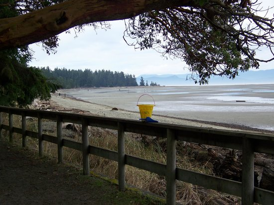 Tigh-Na-Mara Resort:                                     Beach pail is a must