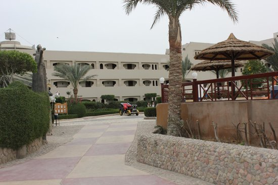 Hurghada SeaGull Beach Resort:                   местнось отеля