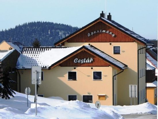 Apartments Cestar