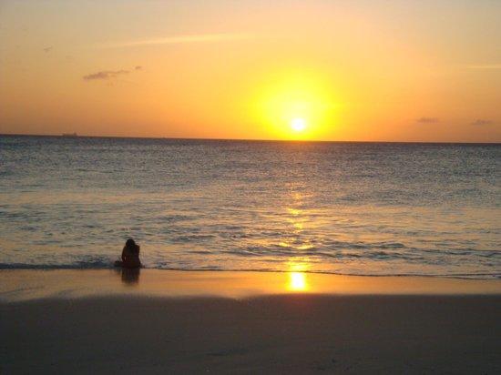 Tamarijn Aruba All Inclusive:                   sunset from our patio