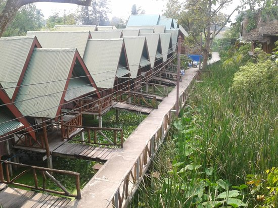 Blue Star Guest House :                   Path leading from the restaurant area to the riverside with bungalows