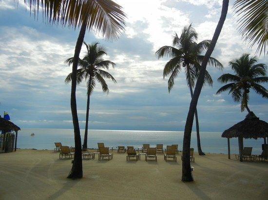 Cheeca Lodge & Spa:                   The well manicured beach in the morning